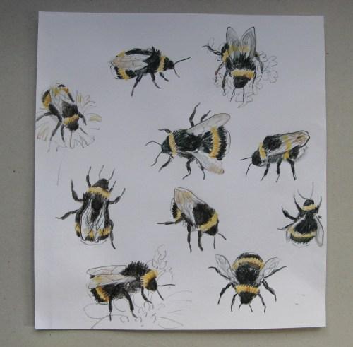 bee drawings 2