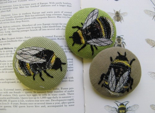 more bees 2