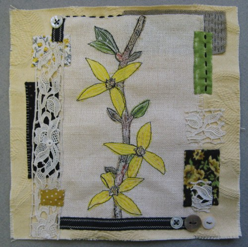 forsythia sampler 1