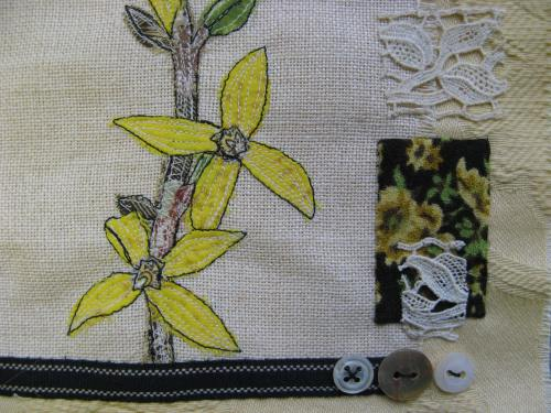 forsythia sampler 3