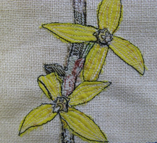 forsythia sampler 4