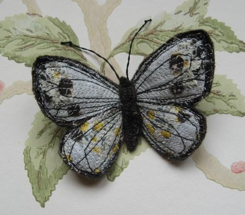 butterflies 23rd June 2013 018
