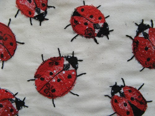 ladybirds 011