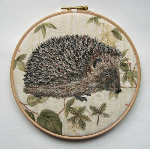 two hedgehogs 004