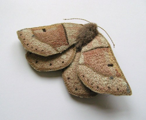 moths for etsy 028