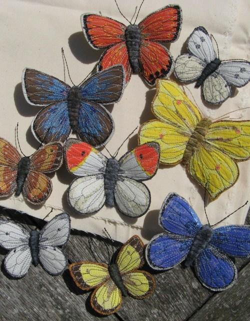 butterflies garden 006